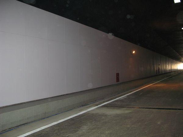 据悉,临江大道隧道全长1.2公里,分双向四车道,设计时速40公里.